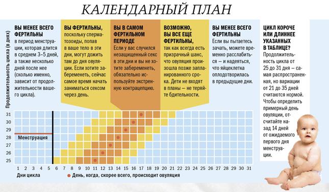 Календарный план фертильных дней