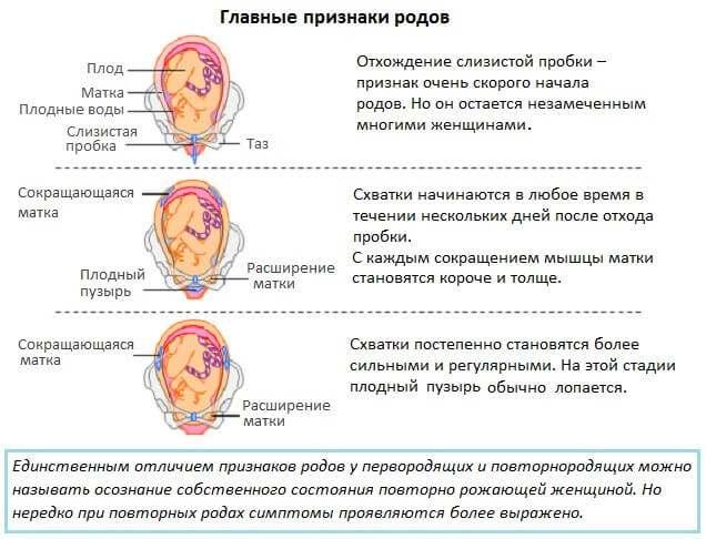 Симптомы родов на 38 неделе беременности