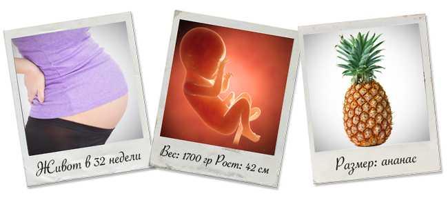32 неделя беременности развитие плода вес и рост
