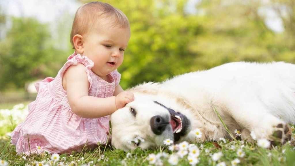 Ребенк в 1 год и 2 месяца интересуется животными