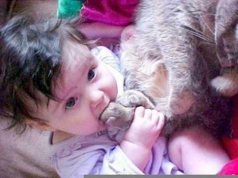 Ребенок в 1год и 1 месяц все тянет в рот