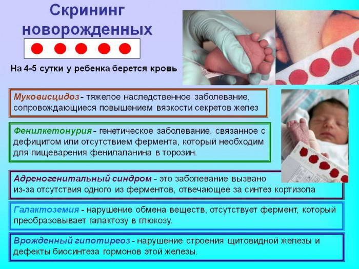 Скрининг новорожденных в роддоме-описание анализов