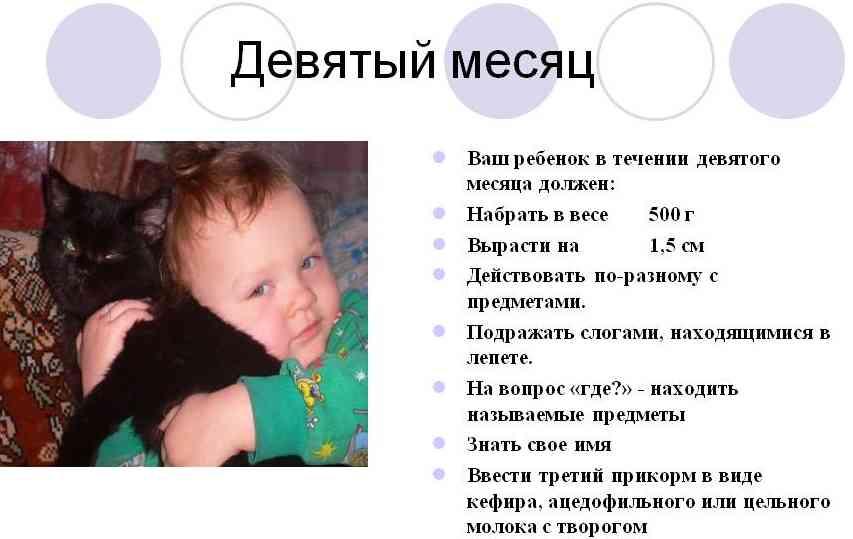 Развитие ребенка в 9 месяцев что должен уметь: физическое ... - photo#28