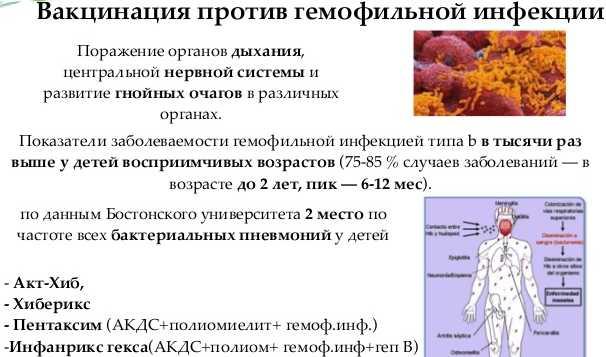 Профилактика пневмонии у детей прививка от ХИБ-инфекции
